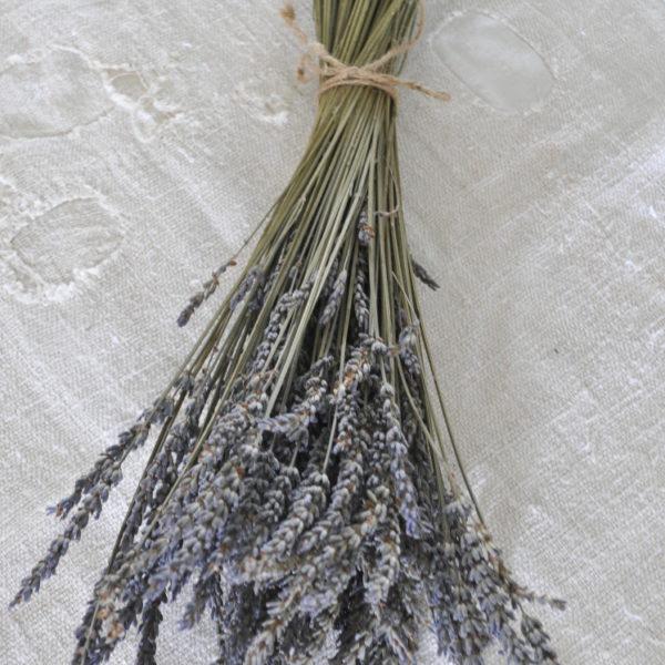 Becky's Farmhouse Lavender Bundle 2